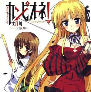 Z novely Campione! bude anime
