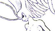 Trocha lásky pro Sirene-chan