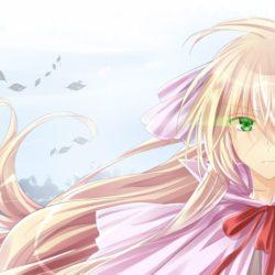 Anime Fairy Tail se po roce vrátí