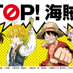 Nová kampaň proti pirátění mangy